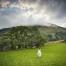 rachel-in-barn-field
